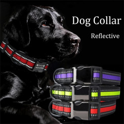 Nylon Personalized Reflective Dog Collar+Leash set