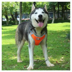 Reflective Dog Harness Vest Adjustable