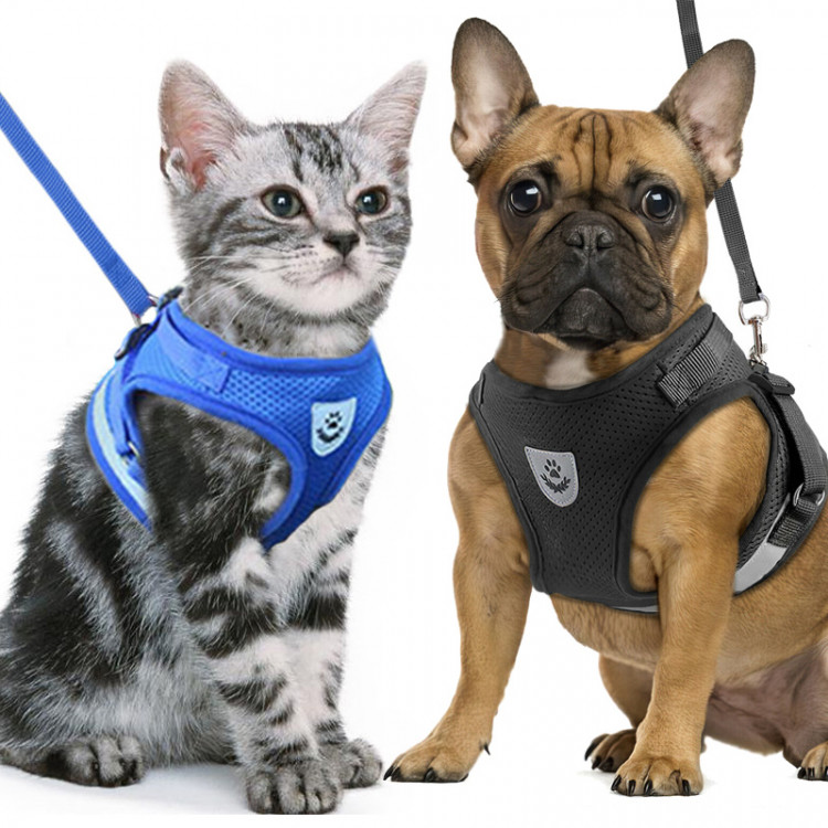 Cat Small Dog Breathable Mesh harness Vest Collar